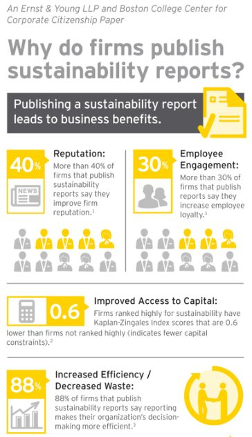 EY Sustainability Infographic